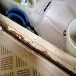 お風呂のガンコ汚れに効くプロの技